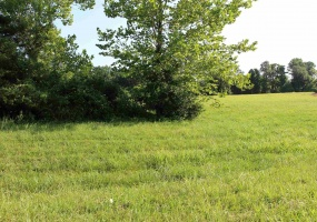 1616 E Michelle (Lot 70) Court, Bloomington, Indiana 47401, ,Lots and land,For Sale,Michelle (Lot 70),202001343